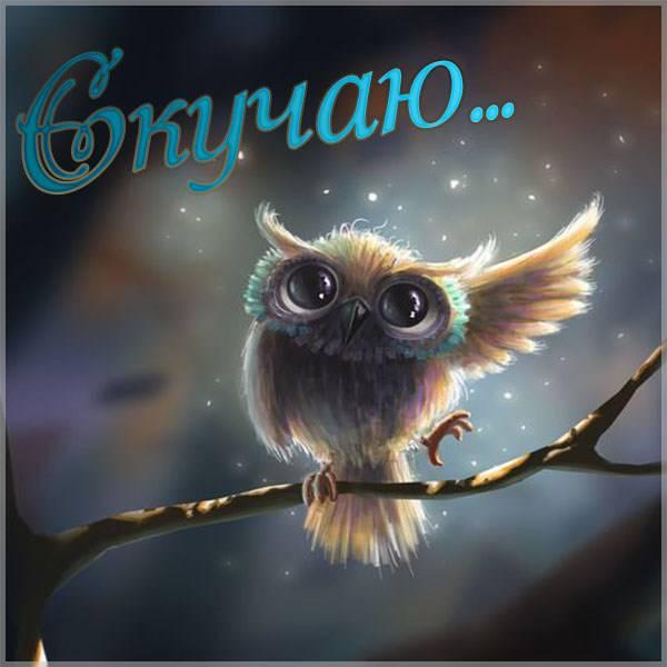 Картинка открытка скучаю - скачать бесплатно на otkrytkivsem.ru