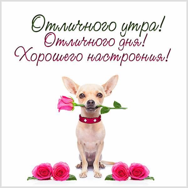 Картинка отличного утра дня и хорошего настроения - скачать бесплатно на otkrytkivsem.ru