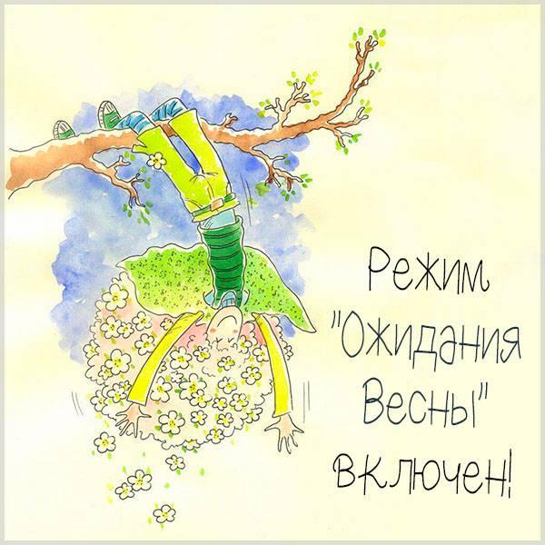 Картинка ожидание весны смешная - скачать бесплатно на otkrytkivsem.ru