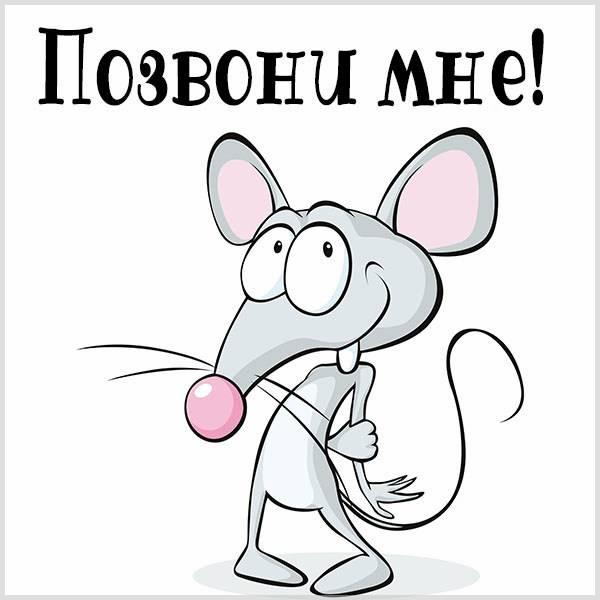 Картинка ожидание звонка - скачать бесплатно на otkrytkivsem.ru