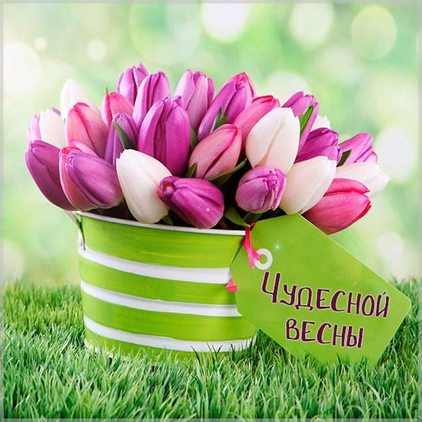Картинка позитив весна - скачать бесплатно на otkrytkivsem.ru
