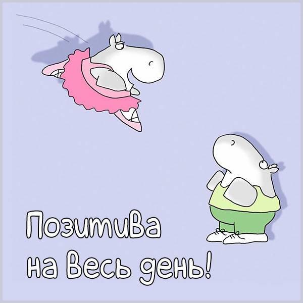 Картинка позитива на весь день прикольная - скачать бесплатно на otkrytkivsem.ru