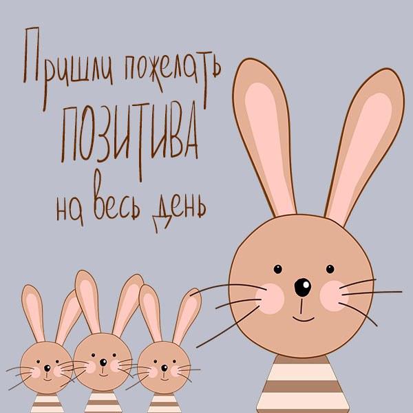 Картинка позитива на весь день с надписью - скачать бесплатно на otkrytkivsem.ru