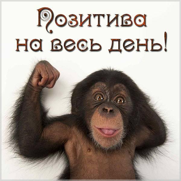 Картинка позитива на весь день - скачать бесплатно на otkrytkivsem.ru