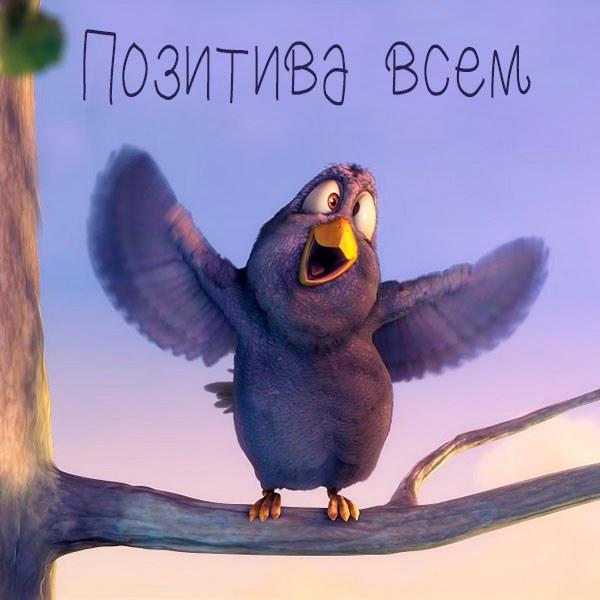 Картинка позитива всем - скачать бесплатно на otkrytkivsem.ru