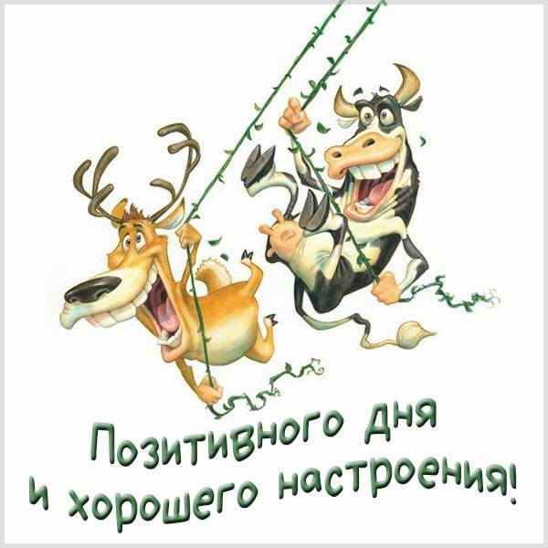 Картинка позитивного дня и хорошего настроения мужчине - скачать бесплатно на otkrytkivsem.ru