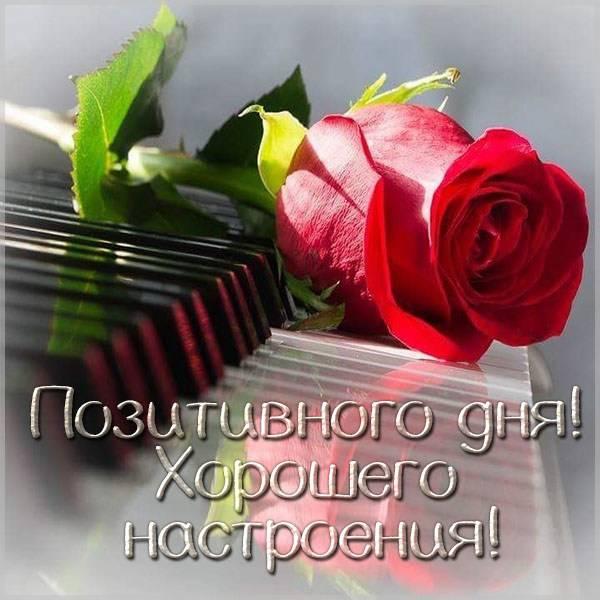 Картинка позитивного дня и хорошего настроения женщине - скачать бесплатно на otkrytkivsem.ru