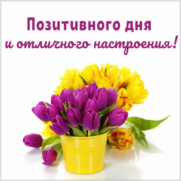Картинка позитивного дня и отличного настроения - скачать бесплатно на otkrytkivsem.ru