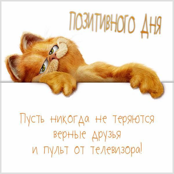 Картинка позитивного дня смешная - скачать бесплатно на otkrytkivsem.ru