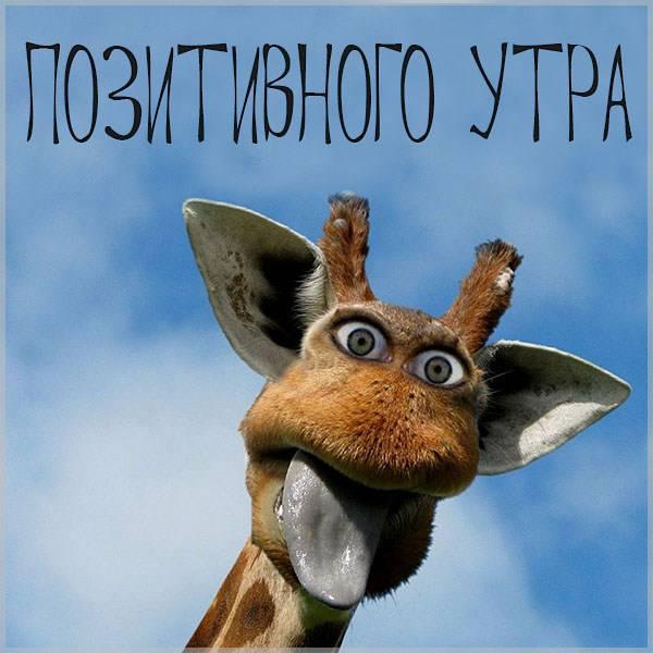 Картинка позитивного утра прикольная - скачать бесплатно на otkrytkivsem.ru