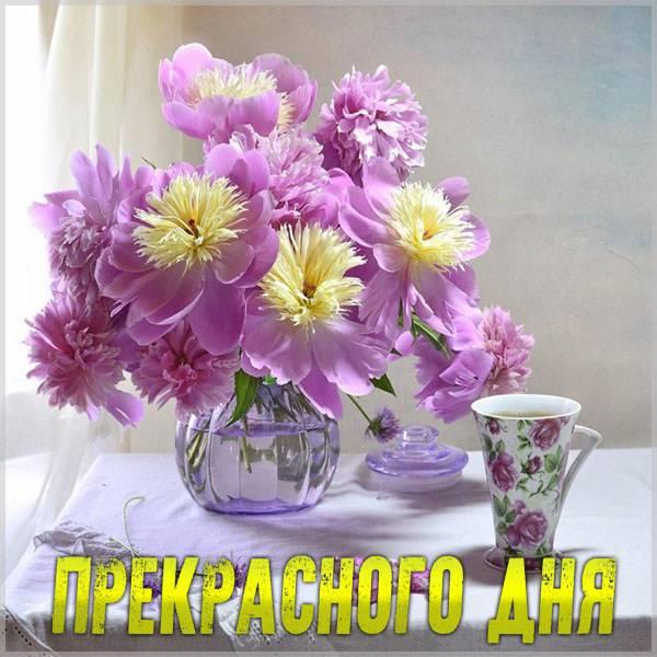 Картинка прекрасного дня красивая необычная - скачать бесплатно на otkrytkivsem.ru