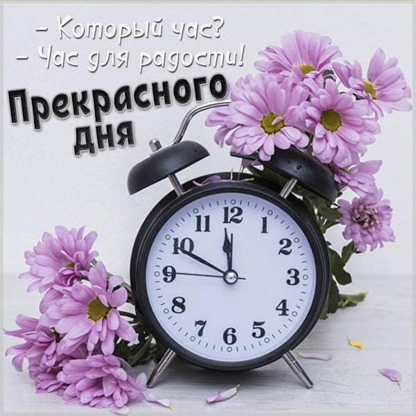 Картинка прекрасного дня парню - скачать бесплатно на otkrytkivsem.ru