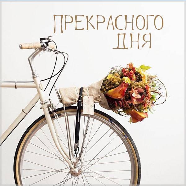 Картинка прекрасного дня с цветами - скачать бесплатно на otkrytkivsem.ru