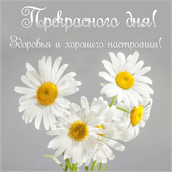 Картинка прекрасного дня здоровья и хорошего настроения - скачать бесплатно на otkrytkivsem.ru