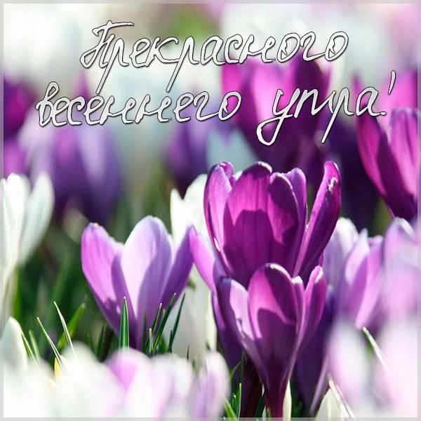 Картинка прекрасного доброго весеннего утра - скачать бесплатно на otkrytkivsem.ru