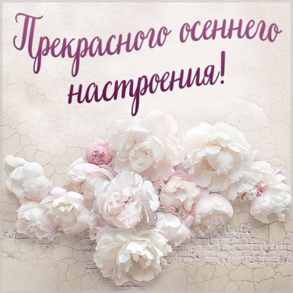 Картинка прекрасного осеннего настроения красивая - скачать бесплатно на otkrytkivsem.ru