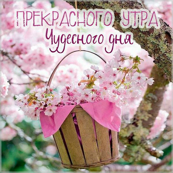 Картинка прекрасного утра чудесного дня - скачать бесплатно на otkrytkivsem.ru