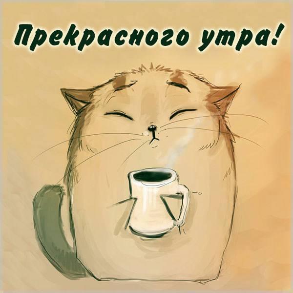 Картинка прекрасного утра - скачать бесплатно на otkrytkivsem.ru