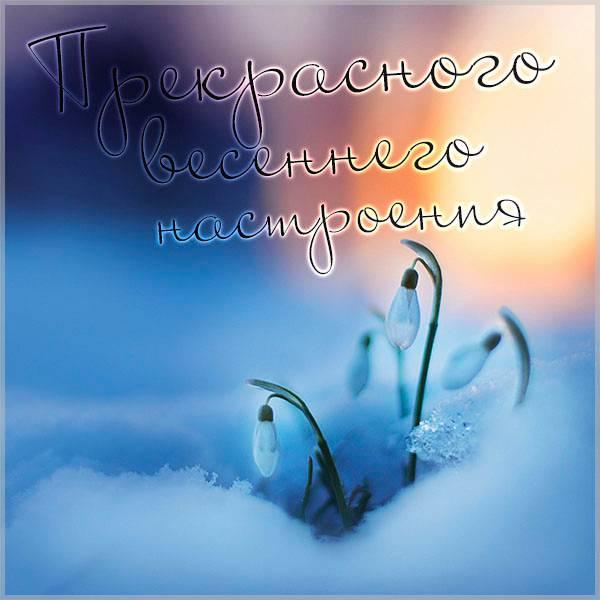 Картинка прекрасного весеннего настроения красивая - скачать бесплатно на otkrytkivsem.ru