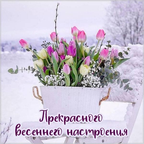 Картинка прекрасного весеннего настроения - скачать бесплатно на otkrytkivsem.ru