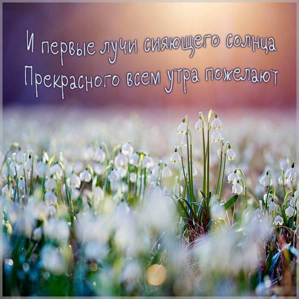 Картинка прекрасного весеннего утра - скачать бесплатно на otkrytkivsem.ru