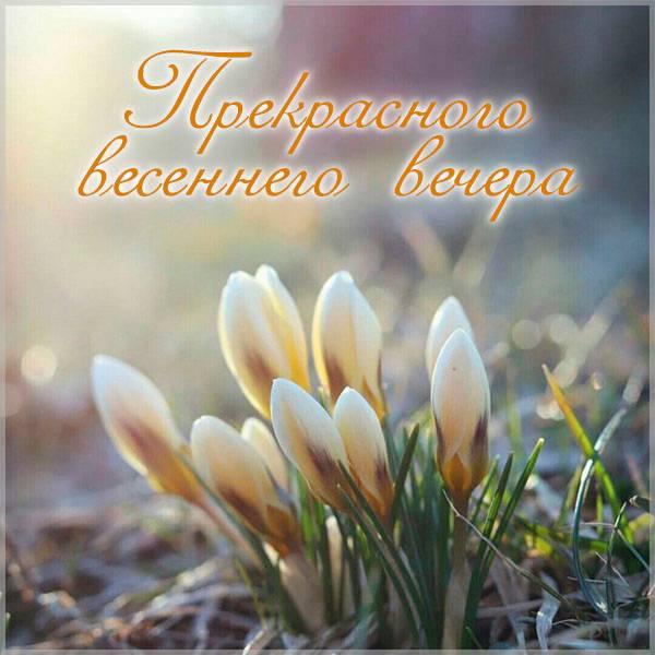 Картинка прекрасного весеннего вечера красивая - скачать бесплатно на otkrytkivsem.ru