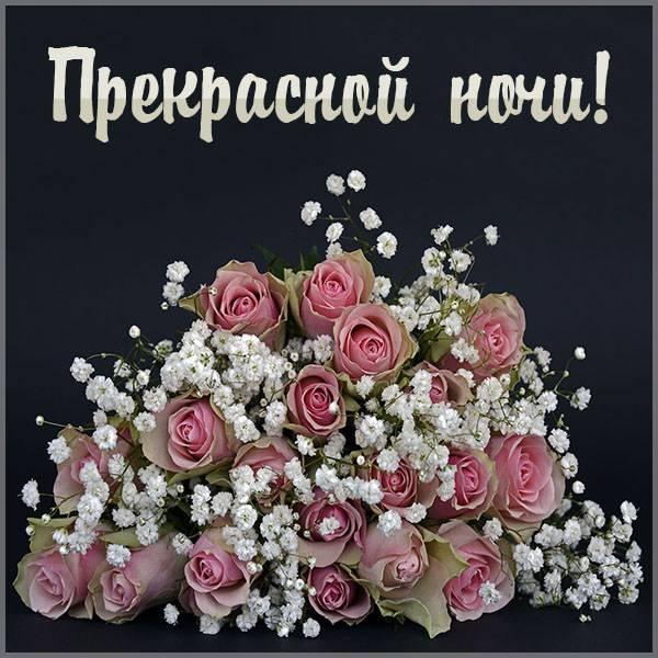 Картинка прекрасной ночи женщине - скачать бесплатно на otkrytkivsem.ru