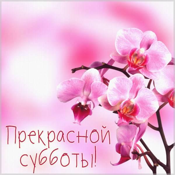 Картинка прекрасной субботы - скачать бесплатно на otkrytkivsem.ru