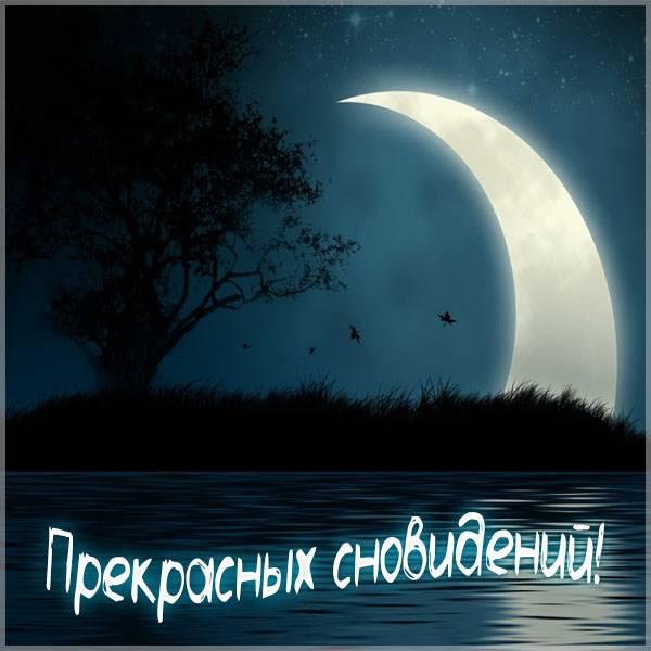 Картинка прекрасных сновидений прикольная - скачать бесплатно на otkrytkivsem.ru