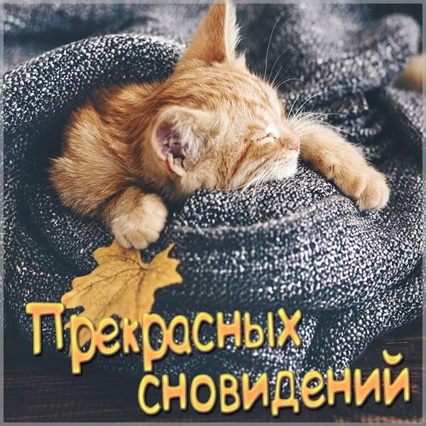 Картинка прекрасных сновидений - скачать бесплатно на otkrytkivsem.ru