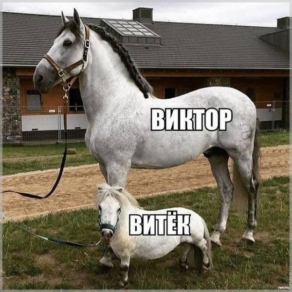 Картинка прикол с именем Витя - скачать бесплатно на otkrytkivsem.ru