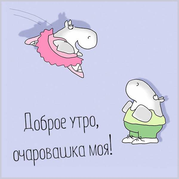 Картинка прикольная доброе утро очаровашка моя - скачать бесплатно на otkrytkivsem.ru