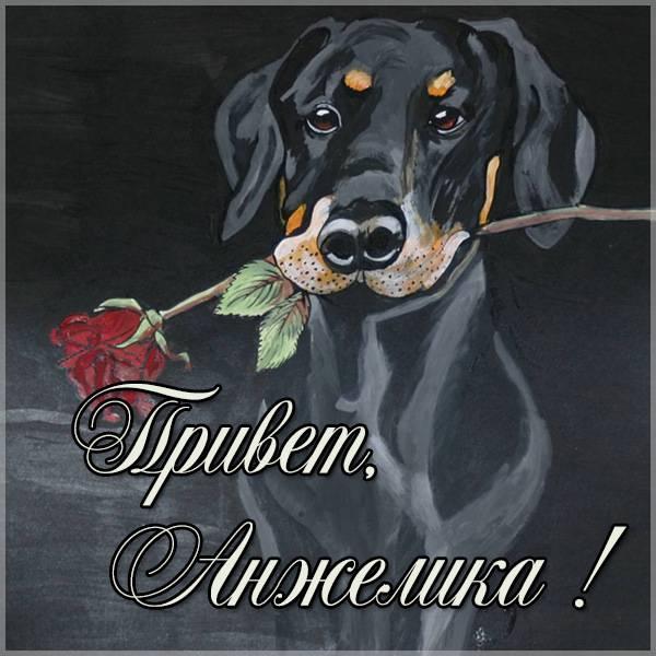 Картинка привет Анжелика - скачать бесплатно на otkrytkivsem.ru