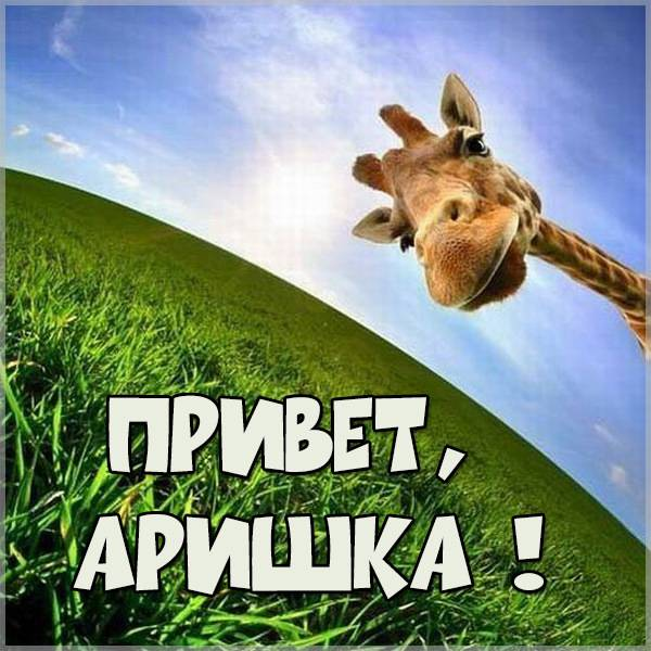 Картинка привет Аришка - скачать бесплатно на otkrytkivsem.ru