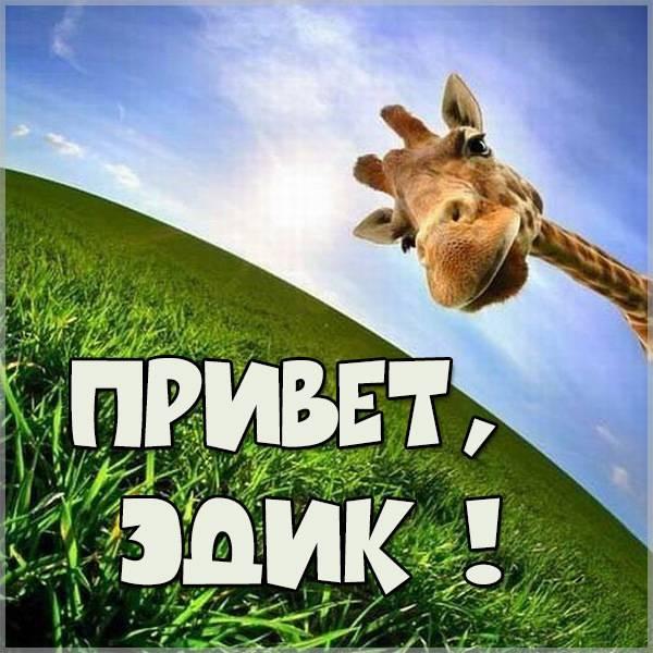 Картинка привет Эдик - скачать бесплатно на otkrytkivsem.ru