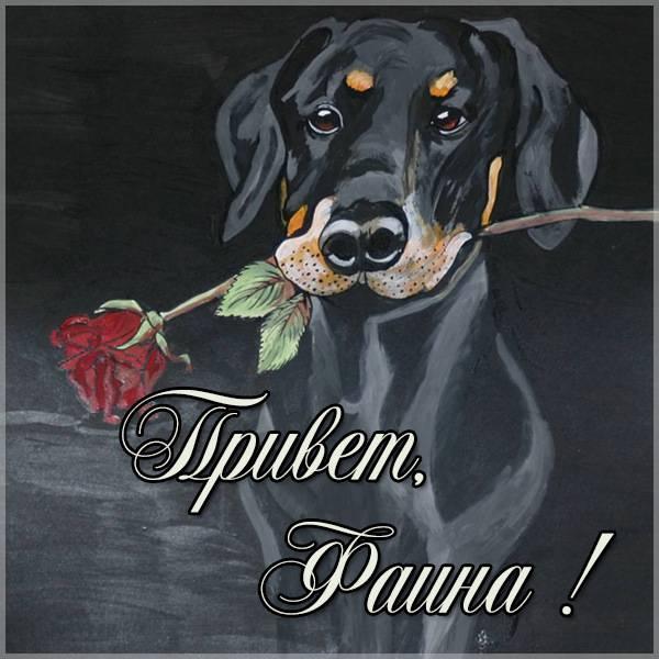 Картинка привет Фаина - скачать бесплатно на otkrytkivsem.ru