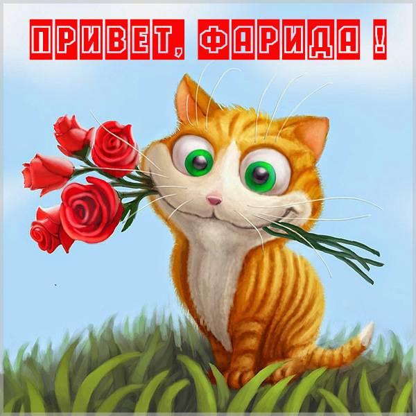 Картинка привет Фарида - скачать бесплатно на otkrytkivsem.ru