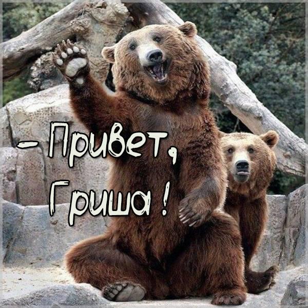Картинка привет Гриша - скачать бесплатно на otkrytkivsem.ru