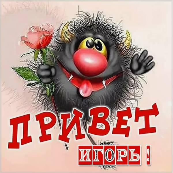 Картинка привет Игорь - скачать бесплатно на otkrytkivsem.ru