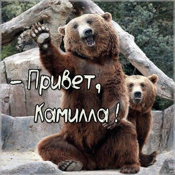Картинка привет Камилла - скачать бесплатно на otkrytkivsem.ru