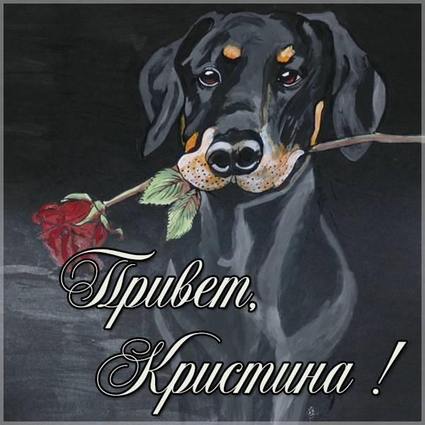 Картинка привет Кристина - скачать бесплатно на otkrytkivsem.ru