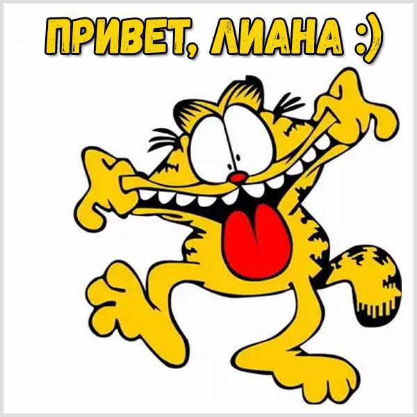 Картинка привет Лиана - скачать бесплатно на otkrytkivsem.ru