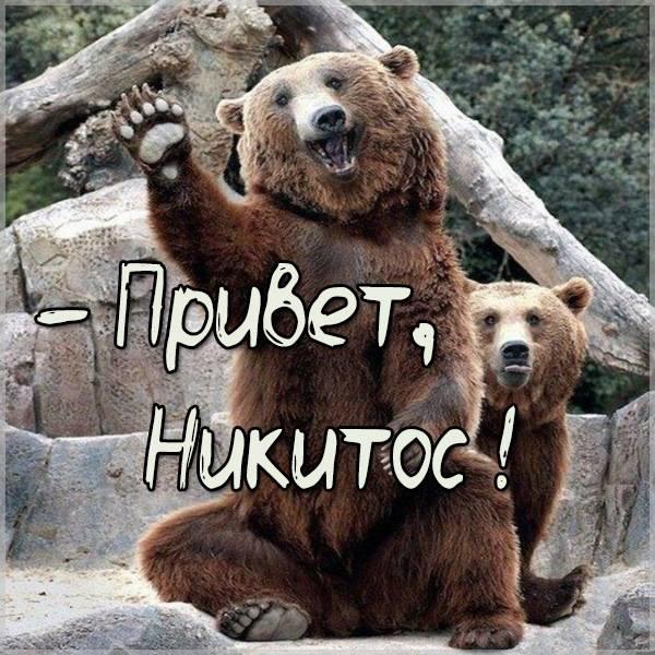 Картинка привет Никитос - скачать бесплатно на otkrytkivsem.ru