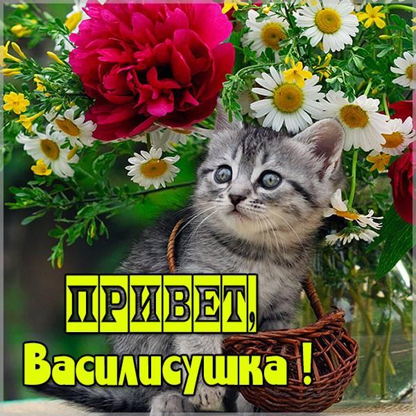 Картинка привет Василисушка - скачать бесплатно на otkrytkivsem.ru