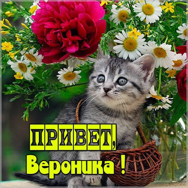 Картинка привет Вероника - скачать бесплатно на otkrytkivsem.ru
