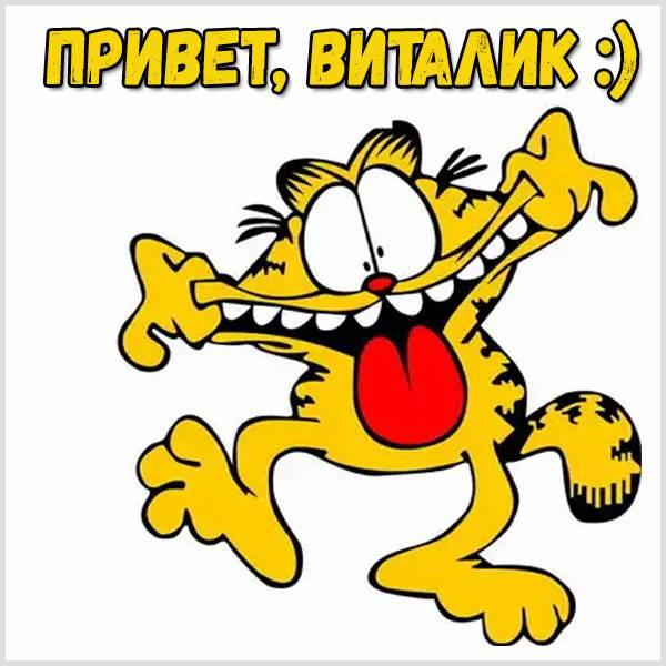 Картинка привет Виталик - скачать бесплатно на otkrytkivsem.ru
