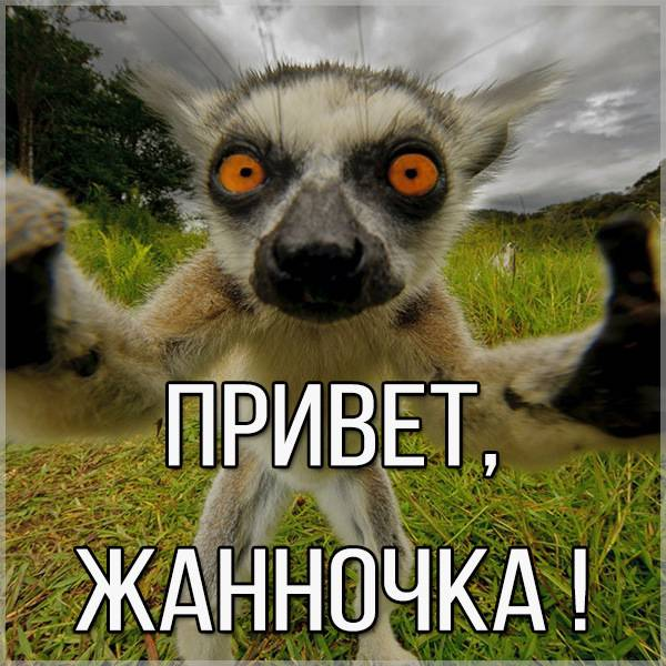 Картинка привет Жанночка - скачать бесплатно на otkrytkivsem.ru