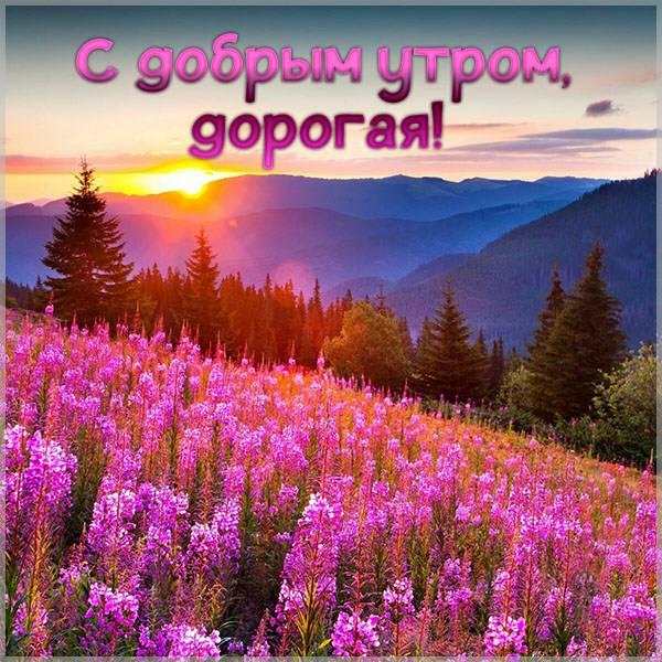 Картинка приветствие с добрым утром девушке - скачать бесплатно на otkrytkivsem.ru