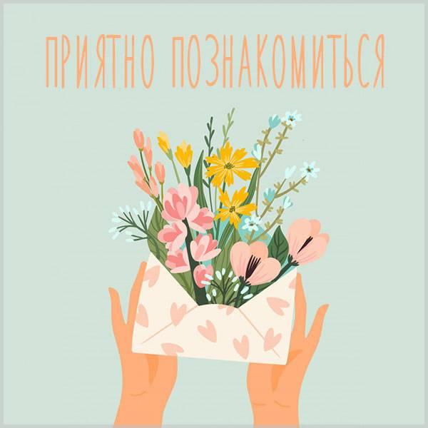 Картинка приятно познакомиться - скачать бесплатно на otkrytkivsem.ru