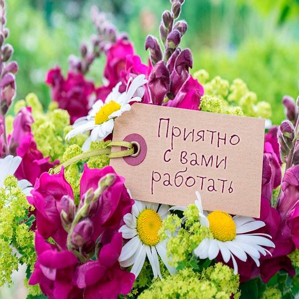 Картинка приятно с вами работать - скачать бесплатно на otkrytkivsem.ru